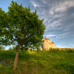 Castle of William the Conqueror in Falaise 4